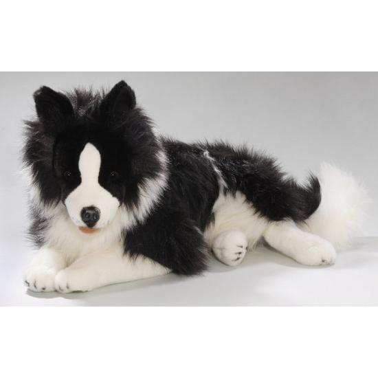 Knuffel Border Collie hond van 60 cm