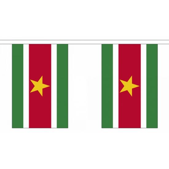Polyester vlaggenlijn van suriname